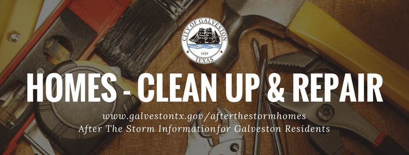 Homes - Clean Up and Repair
